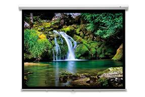 DELUXX Advanced schermo avvolgibile con slowmotion 16:9 color bianco avorio Polaro 295 x 165 cm