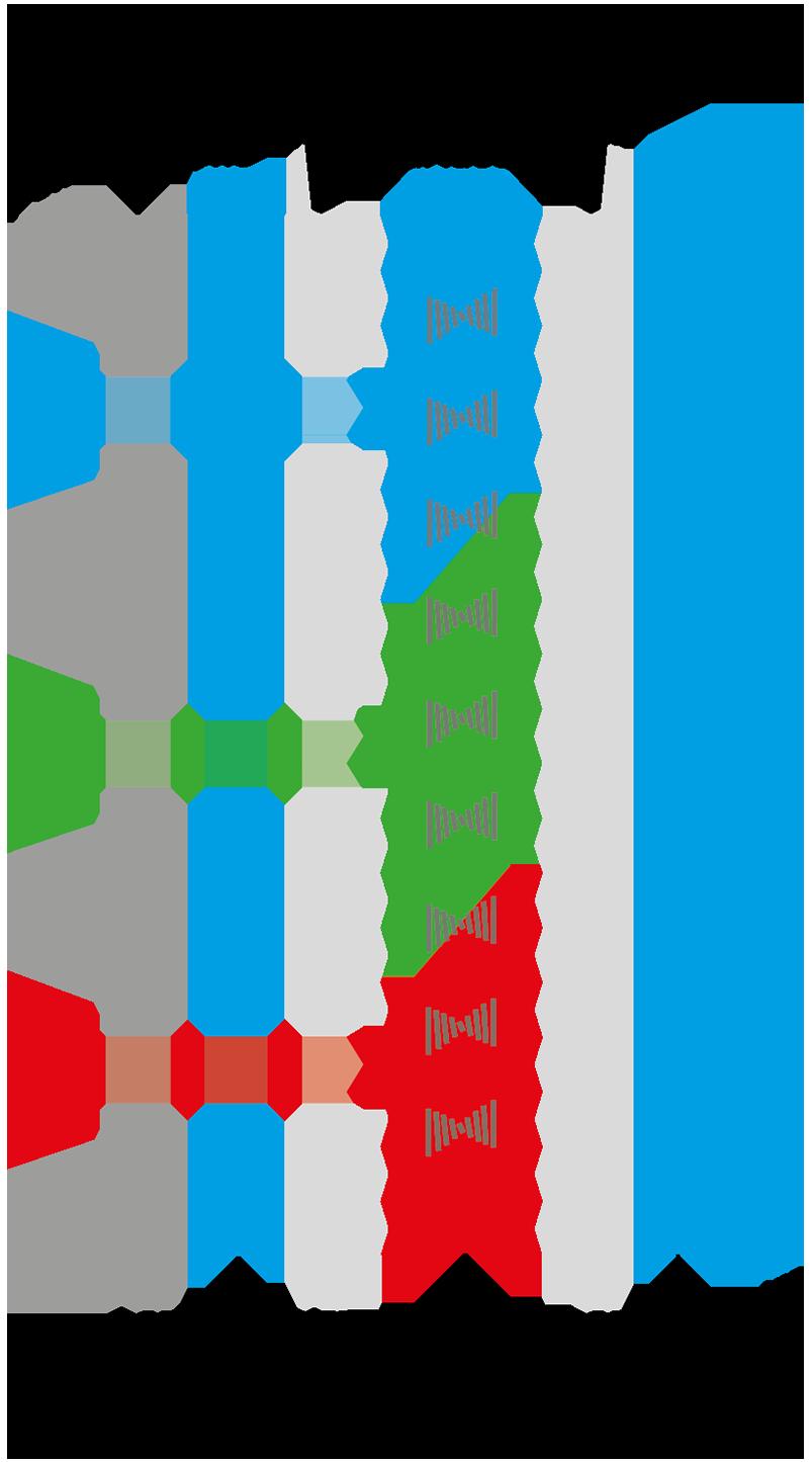 OLED tecnologia del display